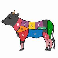 牛肉の希少部位とは?