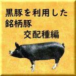 黒豚(バークシャー種)を利用した銘柄豚 交配種編