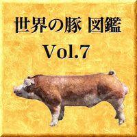 世界の豚 図鑑 Vol.7
