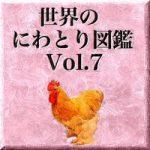世界のにわとり図鑑 Vol.7