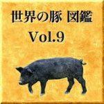 世界の豚 図鑑 Vol.9