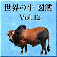 世界の牛 図鑑 Vol.12