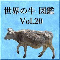 世界の牛 図鑑 Vol.20