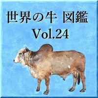 世界の牛 図鑑 Vol.24