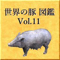 世界の豚 図鑑 Vol.11