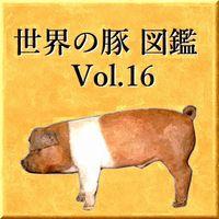 世界の豚 図鑑 Vol.16