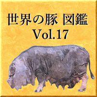 世界の豚 図鑑 Vol.17