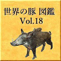世界の豚 図鑑 Vol.18