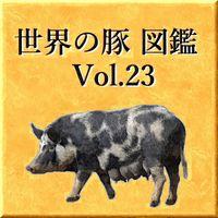 世界の豚 図鑑 Vol.23
