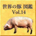 世界の豚 図鑑 Vol.14