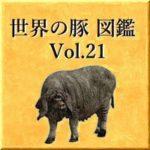 世界の豚 図鑑 Vol.21