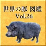 世界の豚 図鑑 Vol.26
